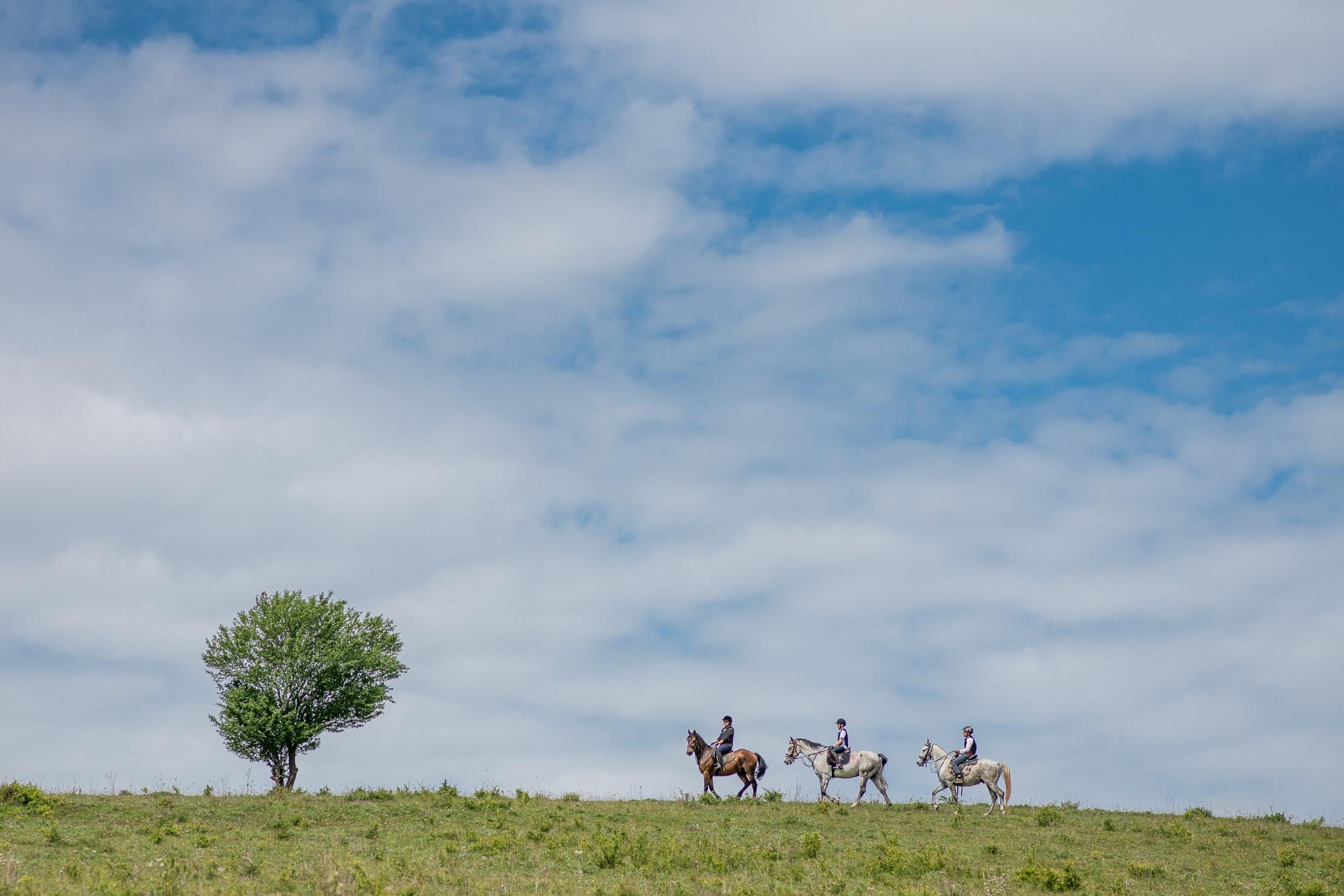 Transylvania On Horseback